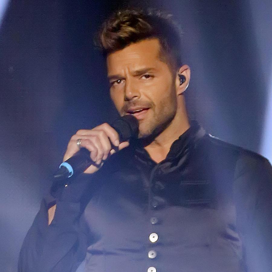 ¿Ricky Martin Podría Volver A Ser Papá En El 2016?
