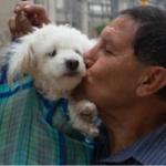 ¿Quieres vivir más? ¡Adopta un perro!