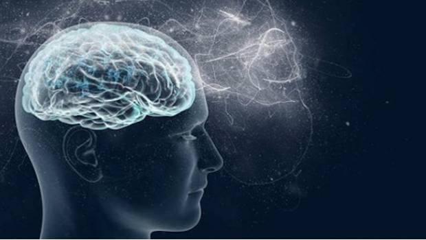 Así Afecta El Uso Del Celular Al Cerebro
