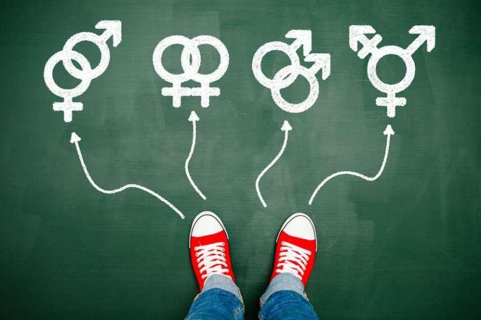 ¿A Qué Edad Solemos Conocer Cuál Es Nuestra Orientación Sexual?
