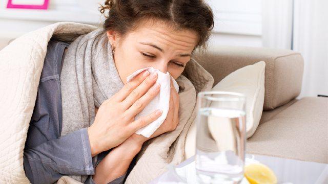 Alerta La OMS Sobre Una 'inevitable' Pandemia De Gripe Mundial