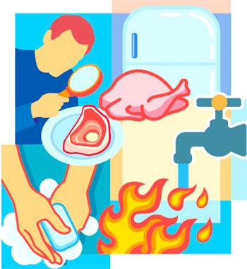 Cómo Prevenir La Contaminación Con Salmonella