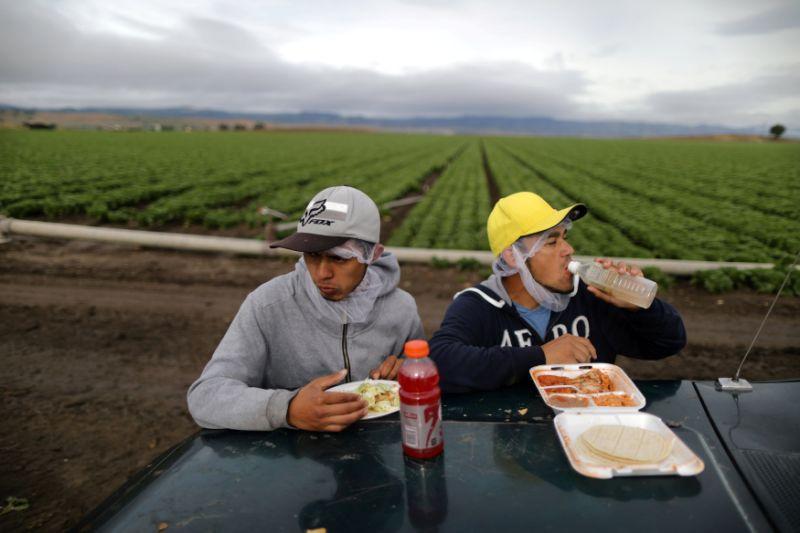 Los Migrantes Mexicanos Del Campo En EEUU, Tan Maltratados Como Esenciales En Tiempos De Coronavirus