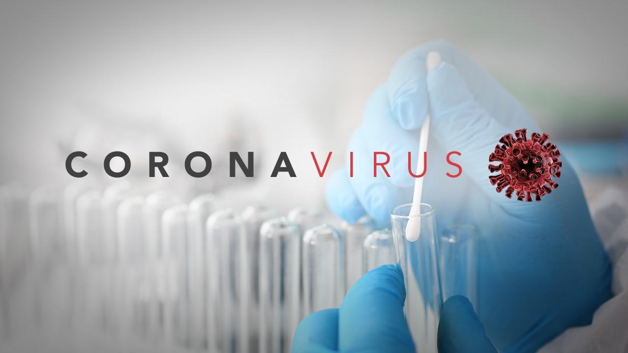 OMS Ve Muy Improbable Que Virus Del COVID-19 Fuera Creado En Un Laboratorio