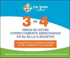 Car Seats 300×250